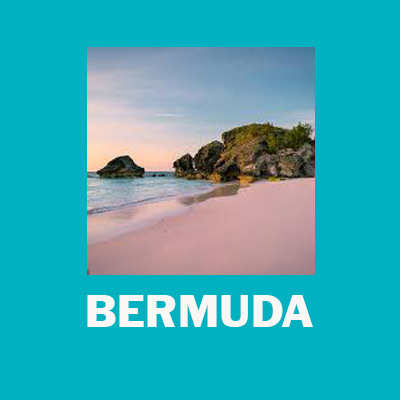 Rocks and Reefs: Science Immersion Bermuda