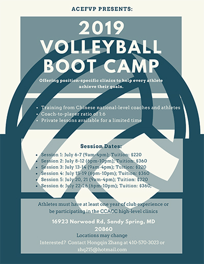 2019 Summer Volleyball Professional Training